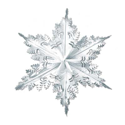 "Metallic Winter Snowflake 24"" Silver"