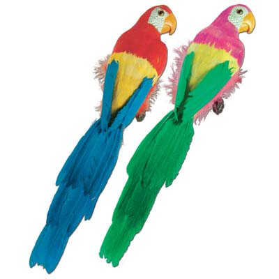 Feathered Parrots 20""