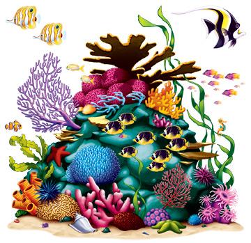 "Coral Reef Prop 5' 3"" x 5' 3"""