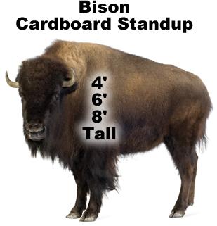 Bison Cardboard Cutout Standup Prop