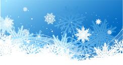 Snowflake Backdrop