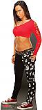 A.J. - WWE Cardboard Cutout Standup Prop
