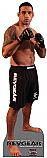 Fabrico Werdum - MMA Cardboard Cutout Standup Prop