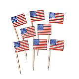 US Flag Picks 2½""