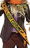 Best Costume Satin Sash