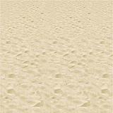 Beach Backdrop 4' x 30'