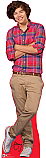 Harry - One Direction Cardboard Cutout Standup Prop