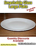 Large Plate Smashable Prop