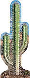 Cactus Cardboard Standee