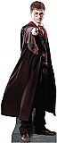 Harry Potter Cardboard Cutout Standup