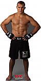 Junior dos Santos - UFC Cardboard Cutout Standup Prop