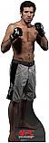 Kenny Florian - UFC Cardboard Cutout Standup Prop