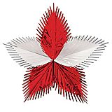"Leaf Starburst 24"" Red and White"